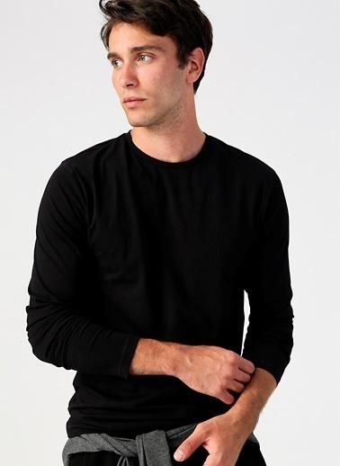 Limon Company Limon Bisiklet Yaka Siyah T-Shirt Siyah